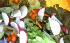 Summer Salad with Lemon Chive Mint Dressing Image by Natasha Hescott